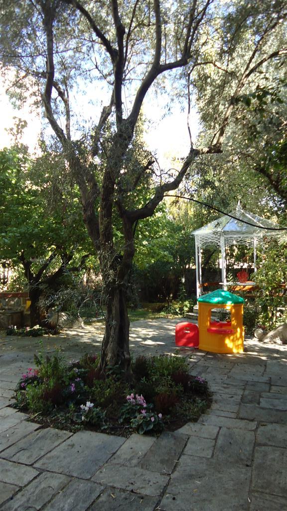 Back Garden B